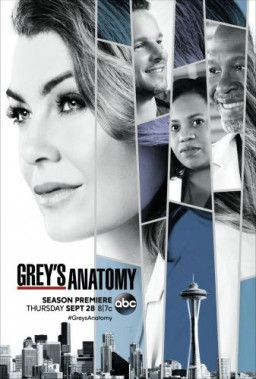 Анатомия Грей / Анатомия страсти / Grey's Anatomy [14 Сезон. 1-15 из 24] (2017) WEB-DLRip | BaibaKo
