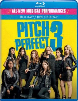 Идеальный голос 3 / Pitch Perfect 3 (2018) BDRip 1080p | Лицензия