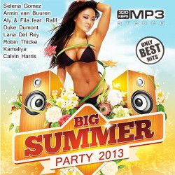 VA - Big Summer Party 2013 (2013) MP3