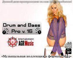 VA - Drum and Bass Pro V.16 (2013) MP3
