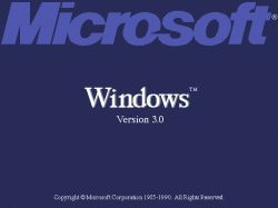 Windows 3.0x