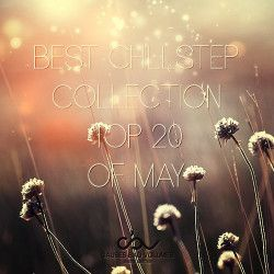 VA - Best Chillstep Collection [May] (2013) MP3